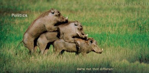 Politicos - no somos tan diferentes
