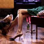 La muñeca hinchable para perros