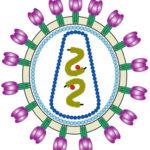 Prevalencia VIH y SIDA